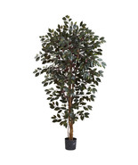 6' Silk Green Capensia Ficus Tree x 3 w/1008 Le... - $113.84