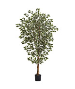 6' Green Silk Hawaiian Ficus Tree x 3 w/1008 Le... - $113.84