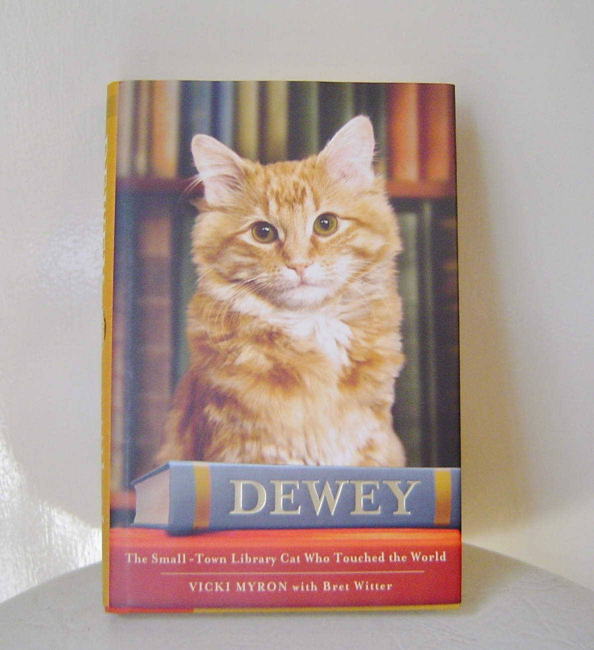 Dewey: The Small-Town Library Cat Who Touched the World Book Hardcover