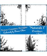 Digital Scrapbooking Naturals 1 Page Overlays - $4.00