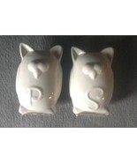 White Owl Salt and Pepper Shakers Ceramic Unfin... - $5.99
