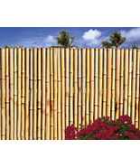 Bamboo Fencing- 24 Feet Long x 3 Feet High x 1