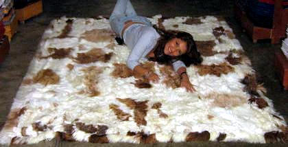 Baby alpaca fur carpet , brown and white spots, 300 x 280 cm/ 9'84 x 9'18