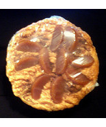 Peach Pie 4 wick Candle 9 inch NIP - $15.99