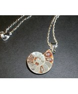 Natural Ammolite Fossil Pendant Necklace 18K Wh... - $12.00
