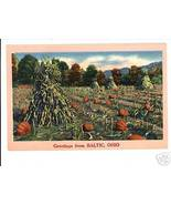 BALTIC OHIO GREETINGS FROM CORN PUMPKINS VINTAG... - $6.83