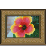 Rainbow Hibiscus, Flowers Counted Cross Stitch ... - $14.00