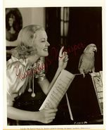 Florence GEORGE Parrot DW ORG PHOTO i635 - $24.99
