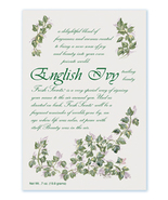 Fresh Scents Scented Sachets by Willowbrook Company - English Ivy, 3 Packs