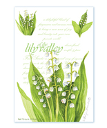 Fresh Scents Scented Sachets by Willowbrook Company - Lily Of The Valley, 3 Pack