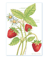 Fresh Scents Scented Sachets by Willowbrook Company - Strawberry, 3 Packs