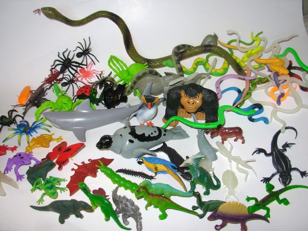 Rubber Snakes For Garden.Search Results For Rubber Snakes Pg1 ...