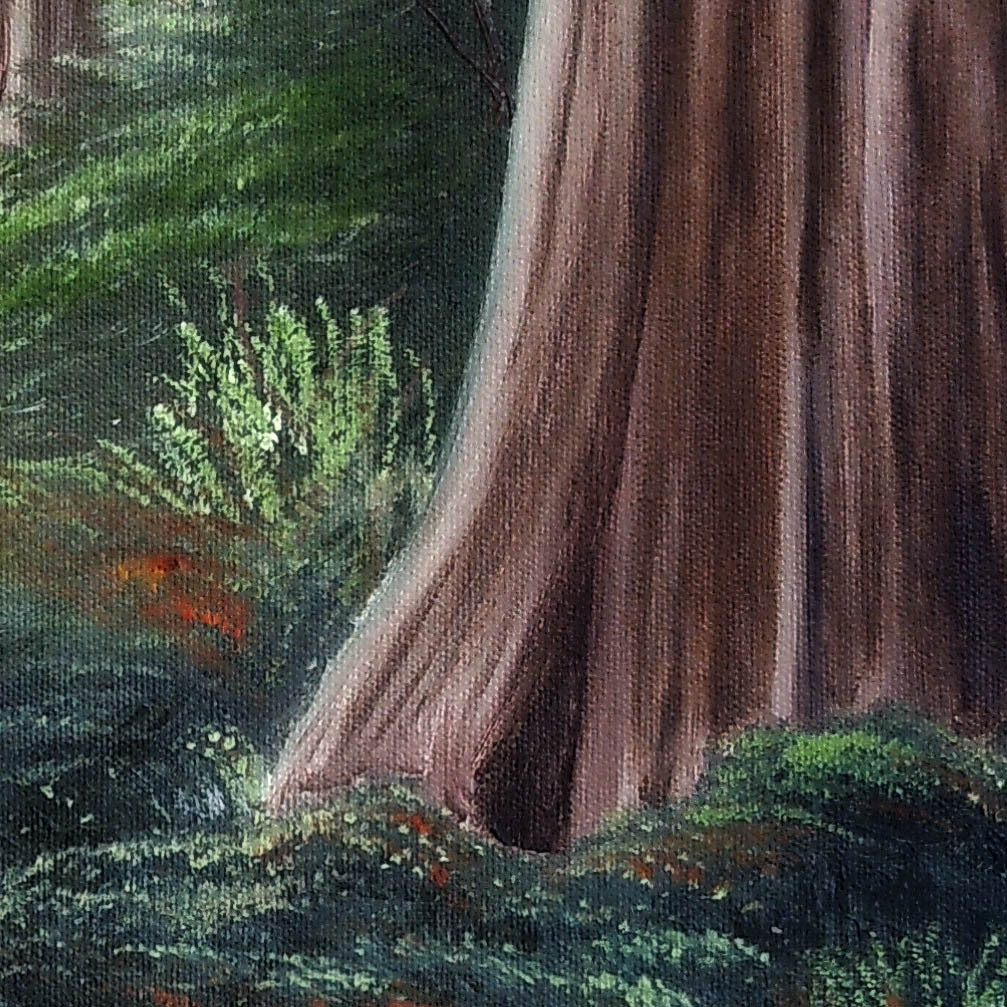 Redwood_detail