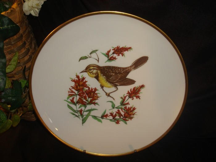 Bird_plates_003