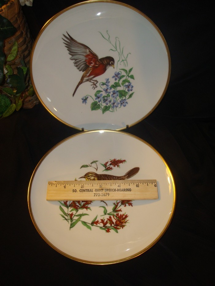 Bird_plates_005