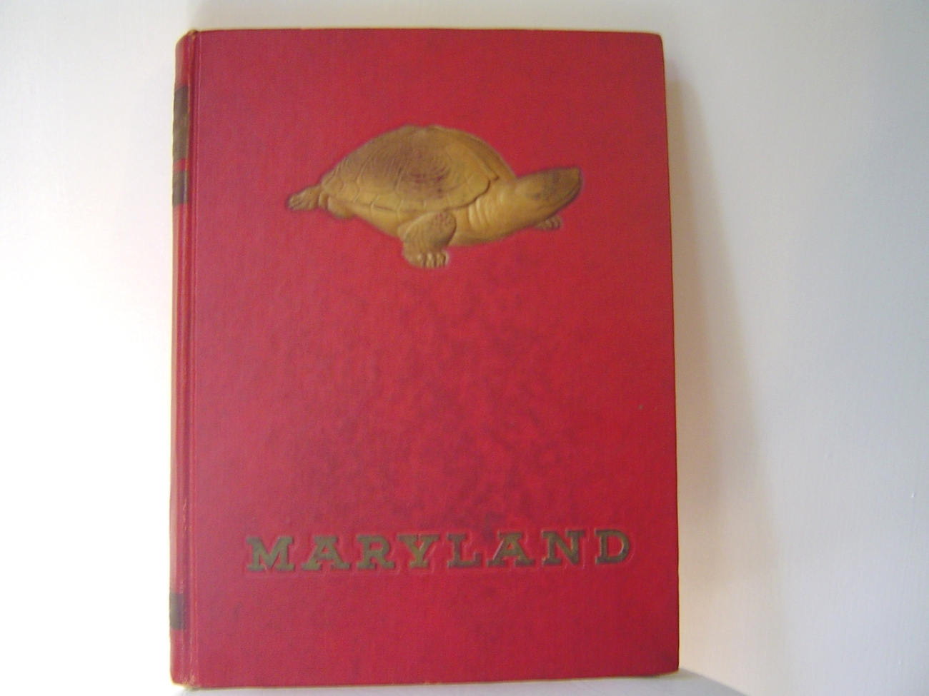 University of Maryland 1948 Yearbook The Terrapin