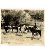 Jack Perrin Silent Era Western Original Movie B... - $9.99