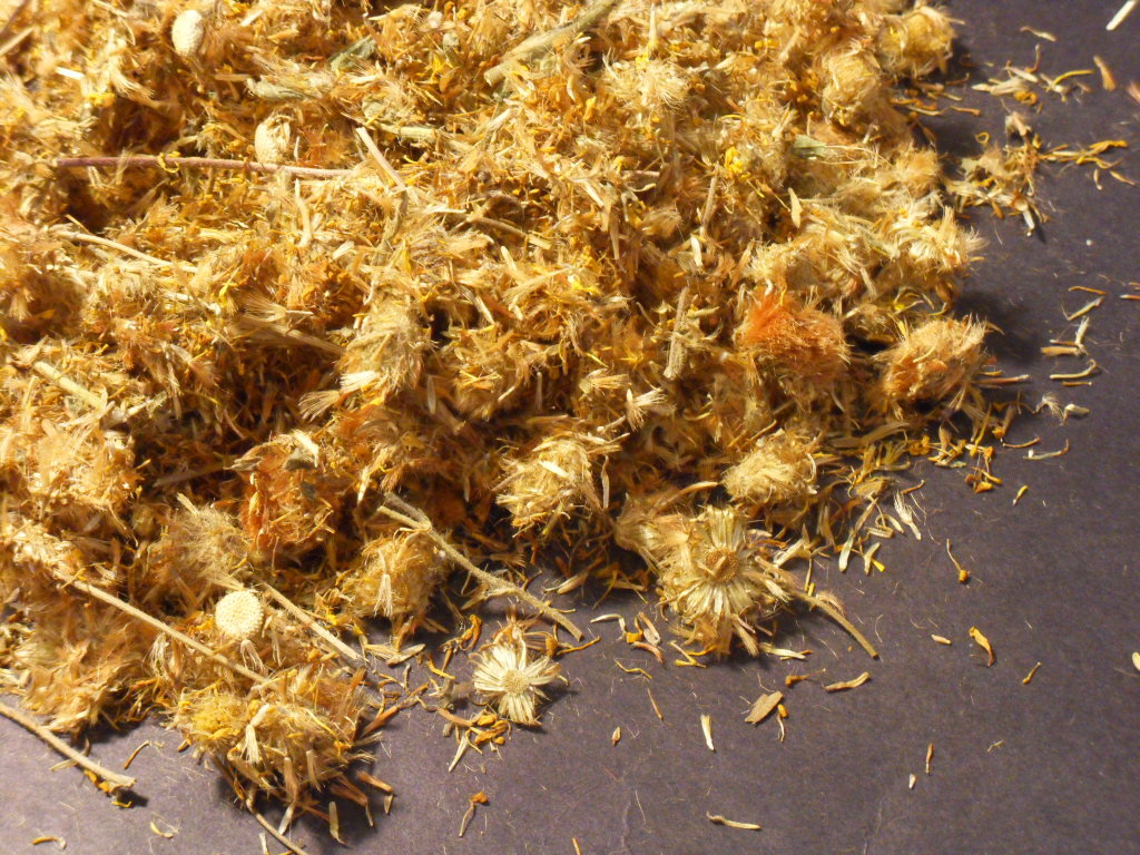 Dried Arnica Flowers http://www.bonanza.com/listings/1-LB-ARNICA-MONTANA-FLOWERS-dried-WOLFSBANE/22429112