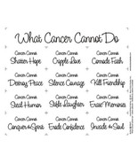What Cancer Cannot Do Quilt Panel New - $14.99