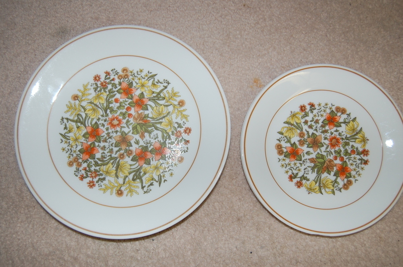 Corelle Dinnerware Indian Summer Dinner Salad Luncheon 8