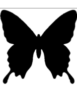Butterfly_thumbtall