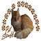 Paws4critters_pet_stuff_logo_175x175_thumb48
