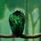 Greenbird_ipad_thumb48