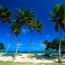 Bacardi_beach__cayo_levantado__dominican_republic_thumb128