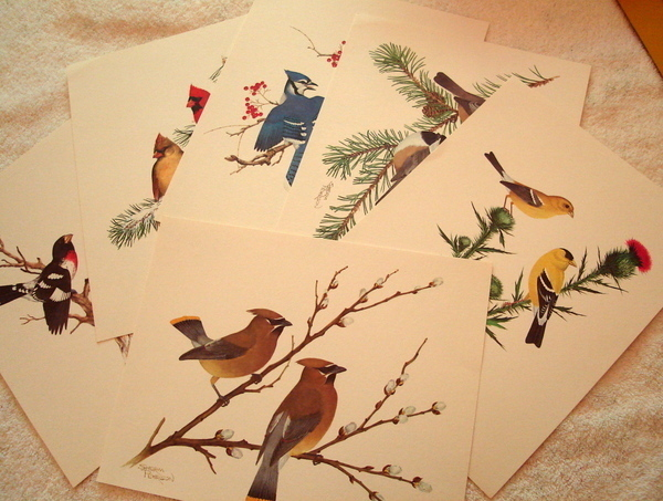 Collector's Portfolio of Song Birds Six Prints by Sherm Pehrson