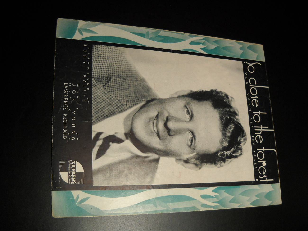 Sheet_music_so_close_to_the_forest_you_can_t_see_the_trees_rudy_vallee_1934_harms_01