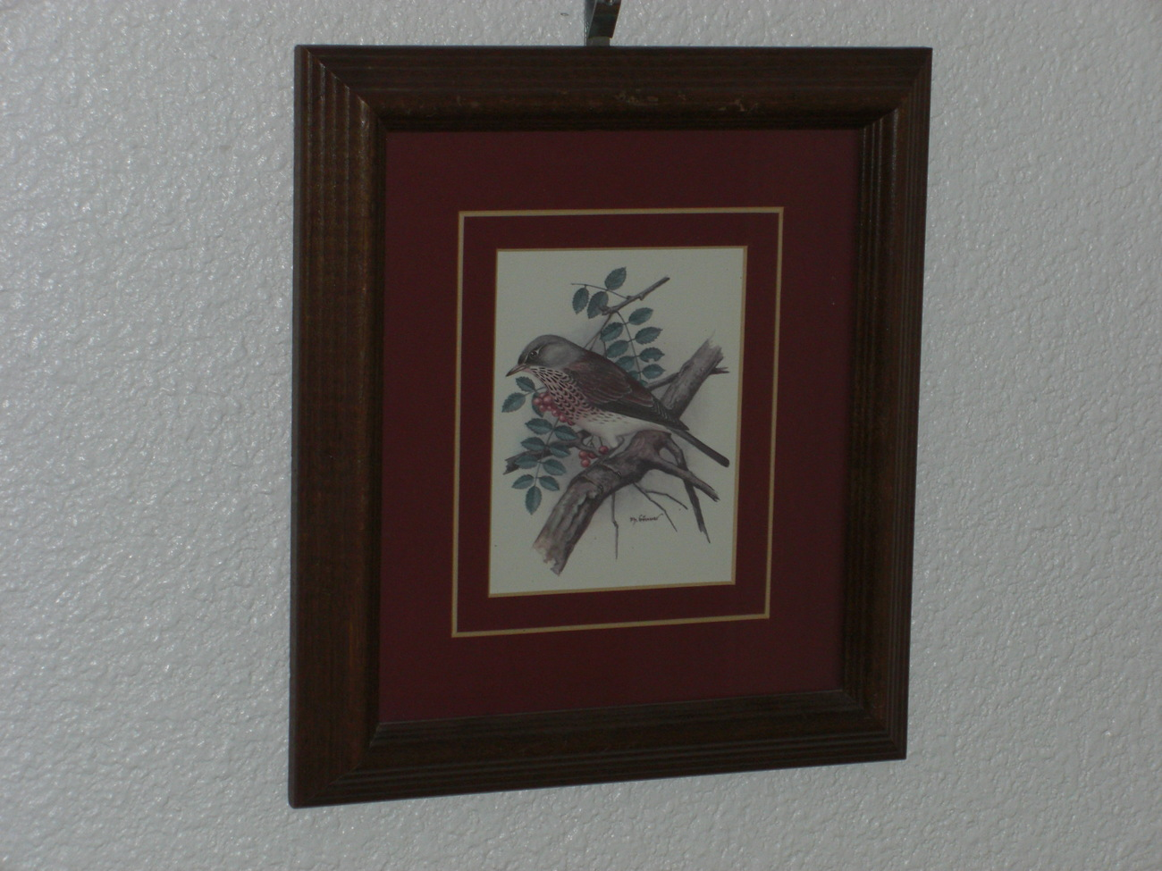PH Gonner Bird Print Framed