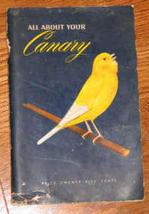 Canary1_thumb200