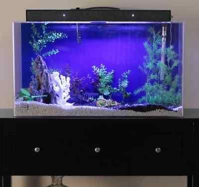 60 gallon aquarium saltwater fresh water acrylic clear for 60 gallon fish tank
