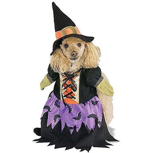Image 0 of Bewitched Dog Costume - Medium or Large