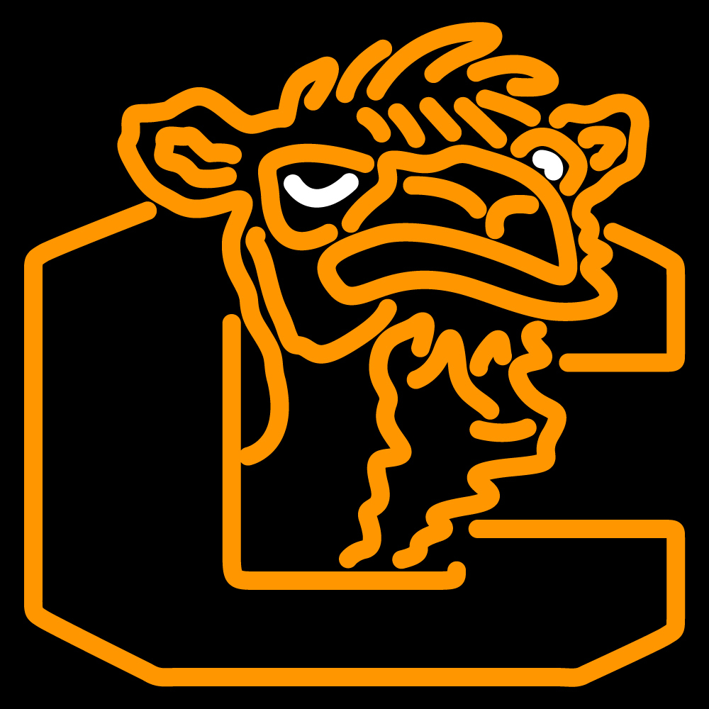 ncaa campbell fighting camels logo neon sign neon