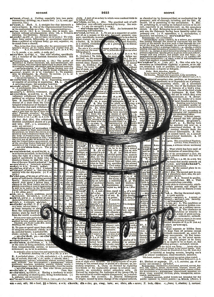 Antique bird cage drawing - photo#29