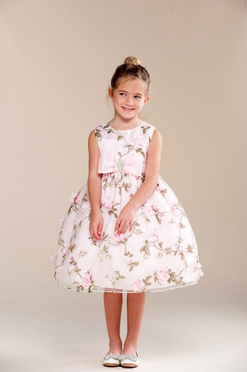 Image 1 of Posh Sweet Pink Floral Embroidered Flower Girl Party Dress, Crayon Kids USA - 4T