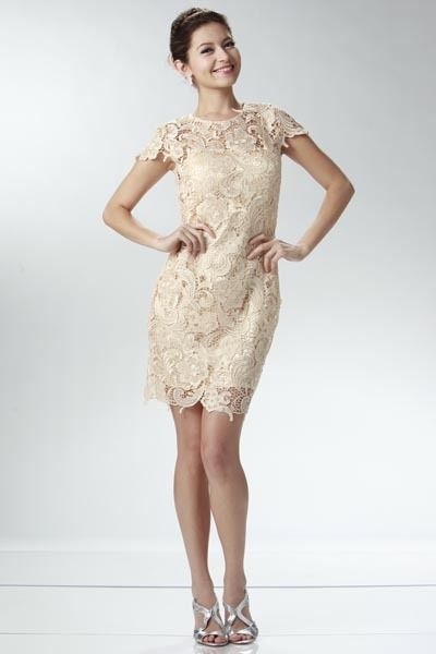 Image 0 of Elegant Chic Lace Lined Dress, Wedding Cocktail Club Party, Champagne Ivory