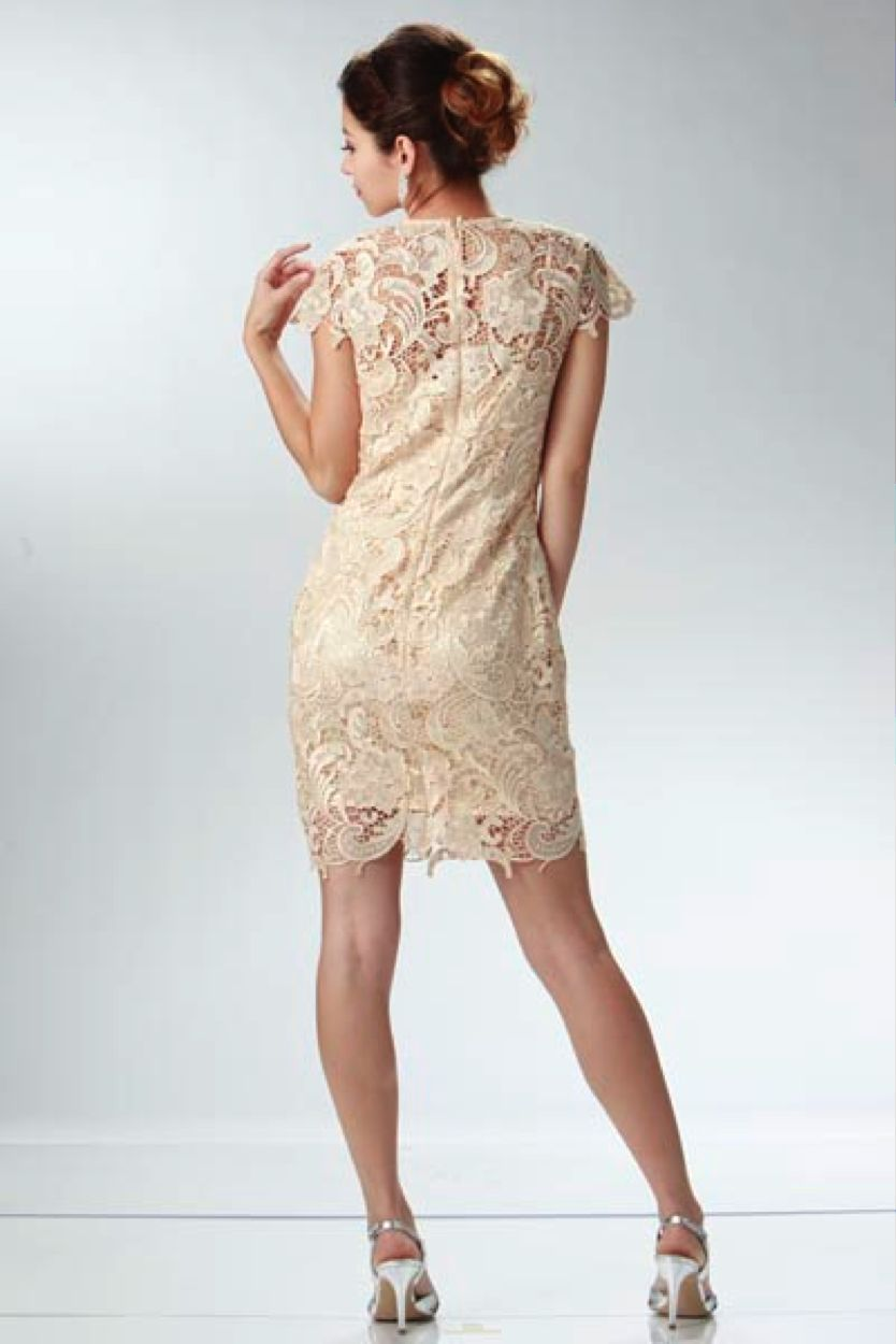 Image 4 of Elegant Chic Lace Lined Dress, Wedding Cocktail Club Party, Champagne Ivory