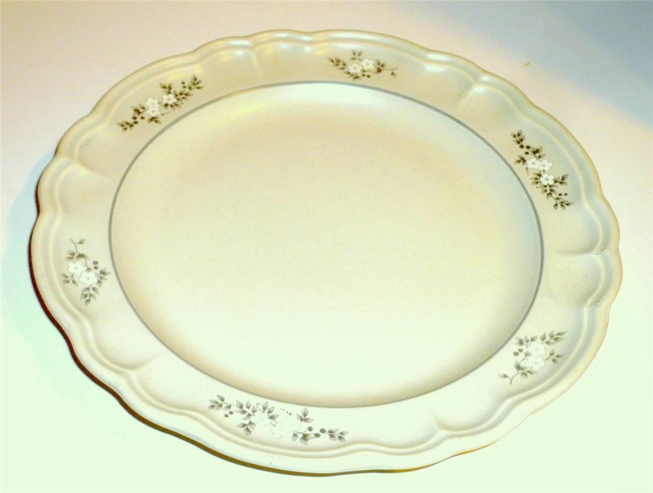 pfaltzgraff replacement dinner plate excellent only 1 is this your