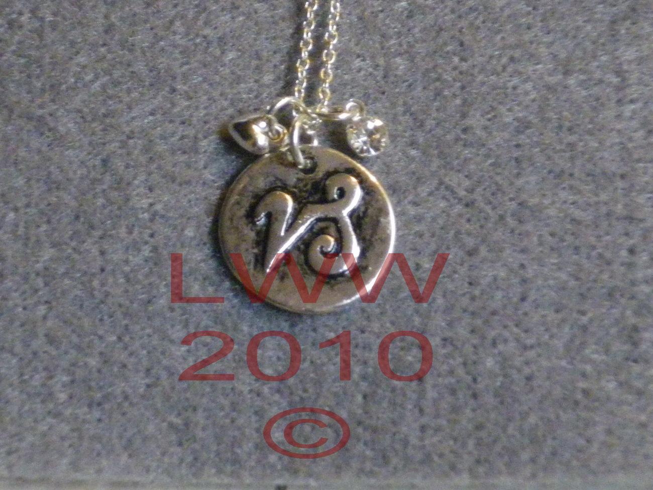 Capricorn Zodiac Charm Necklace Pendant & Chain New Bonanza