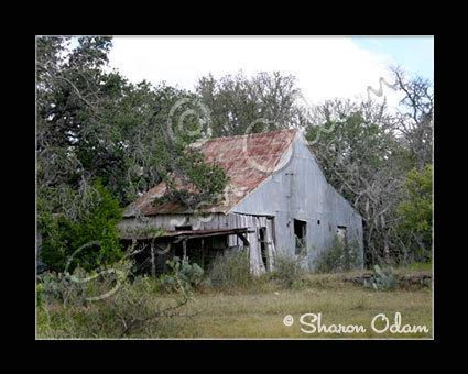 Bh0037_old-house281