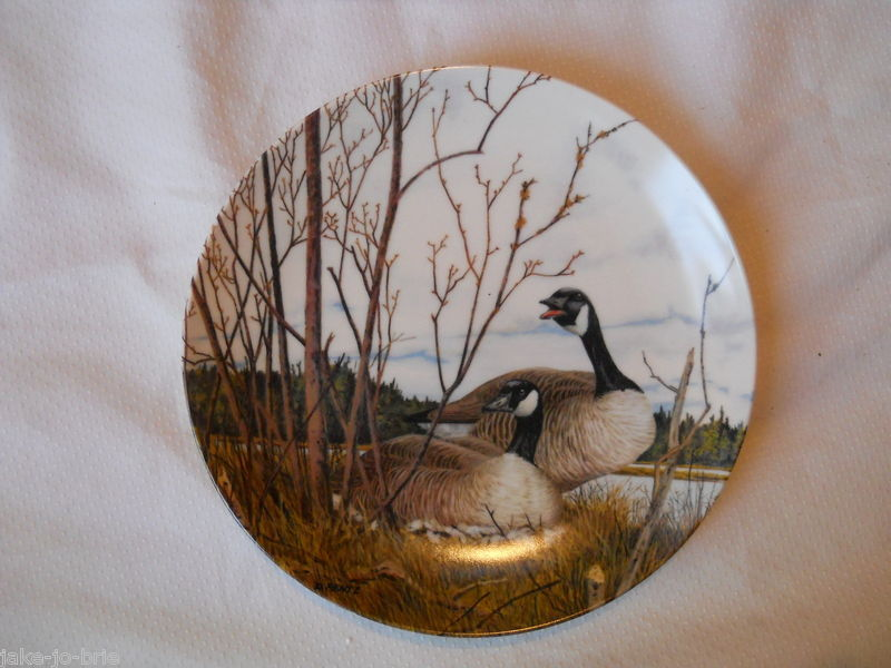 how to make a canada goose bird out