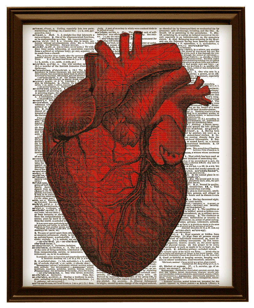Human heart anatomy vintage - photo#5