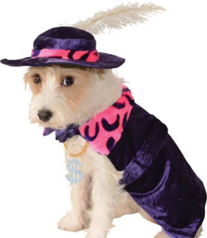 Amazing Purple Pet Dog Costume: Mac 'Sugar' Daddy Flamboyant Cape/Hat, Rubies -