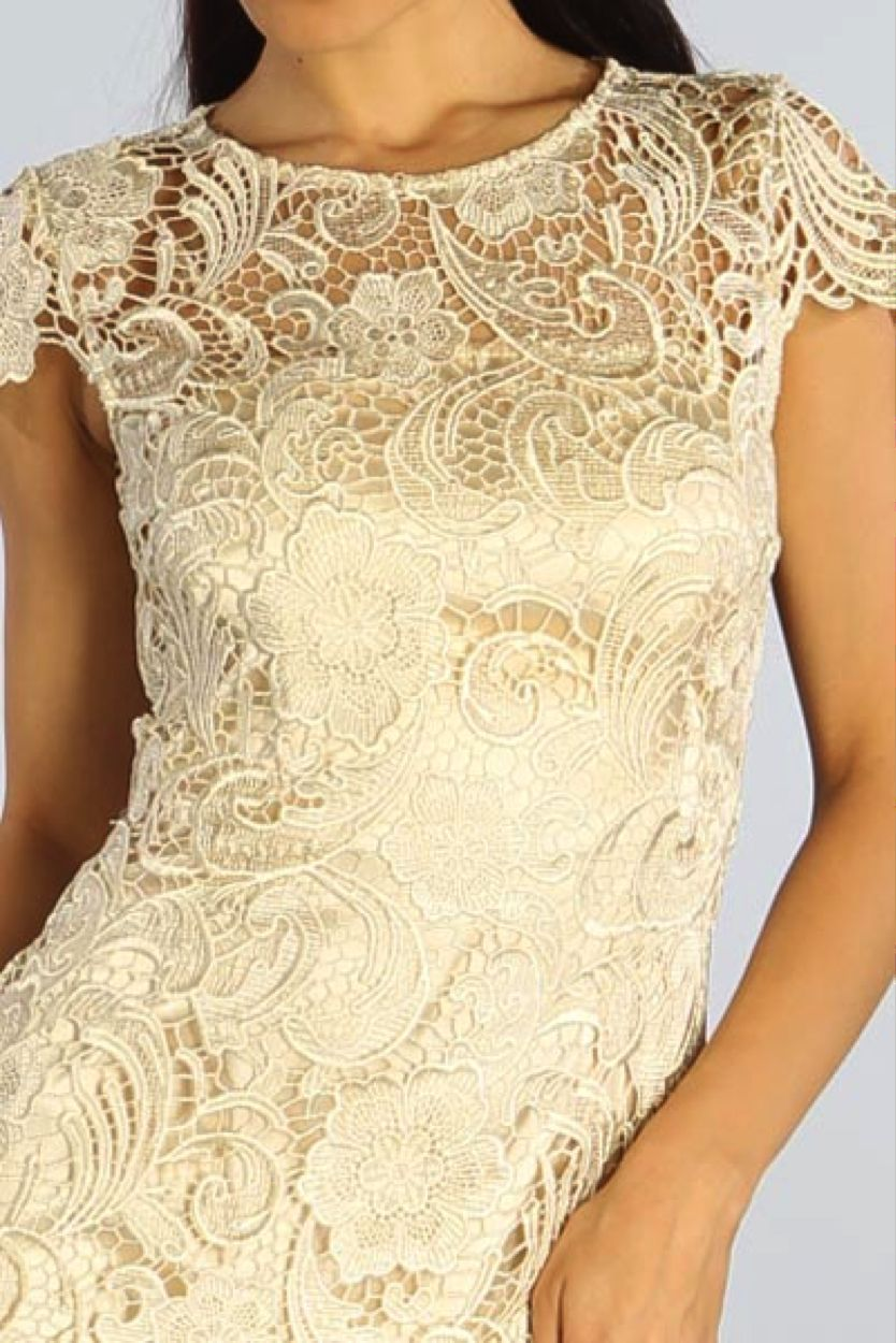 Image 3 of Elegant Chic Lace Lined Dress, Wedding Cocktail Club Party, Champagne Ivory
