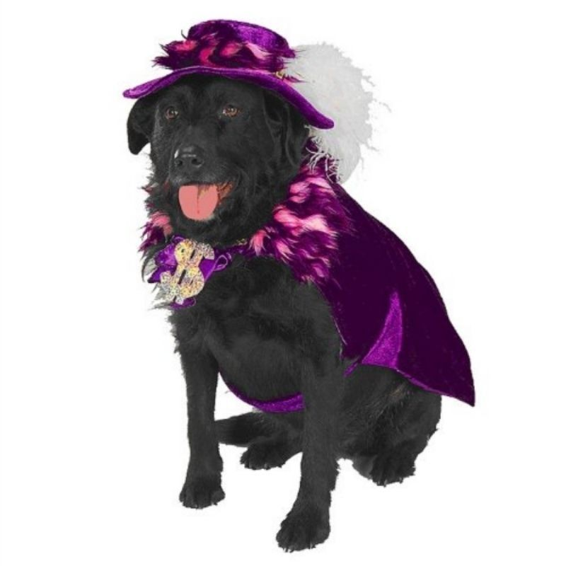 Image 3 of Amazing Purple Pet Dog Costume: Mac 'Sugar' Daddy Flamboyant Cape/Hat, Rubies -