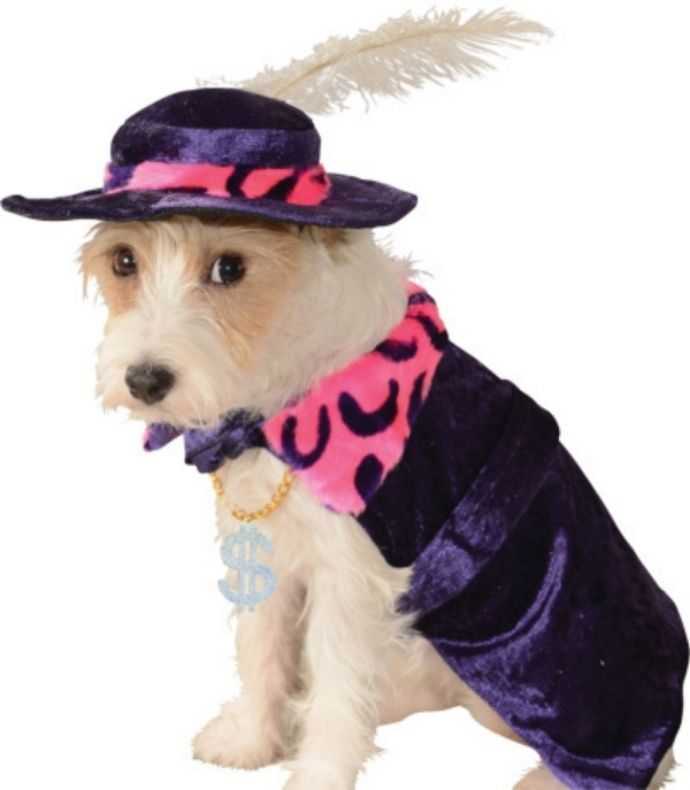 Image 4 of Amazing Purple Pet Dog Costume: Mac 'Sugar' Daddy Flamboyant Cape/Hat, Rubies -