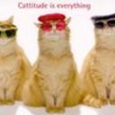 Cattitude_thumb128