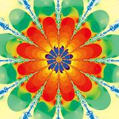 Cactus_blossom_thumb175